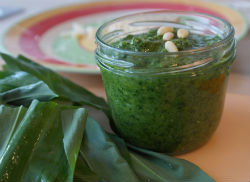 Greens as Fat-Delivery System--Pesto!